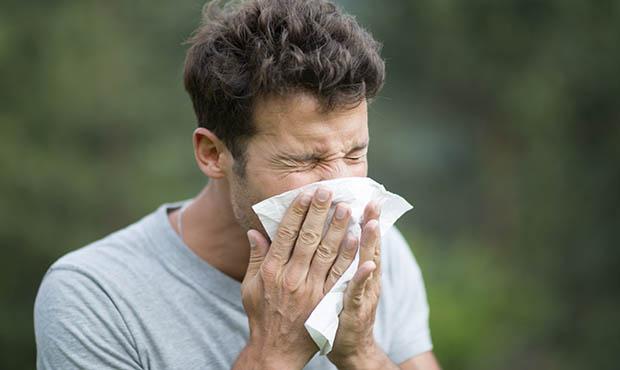 alergia primaveral clinica dental en malaga