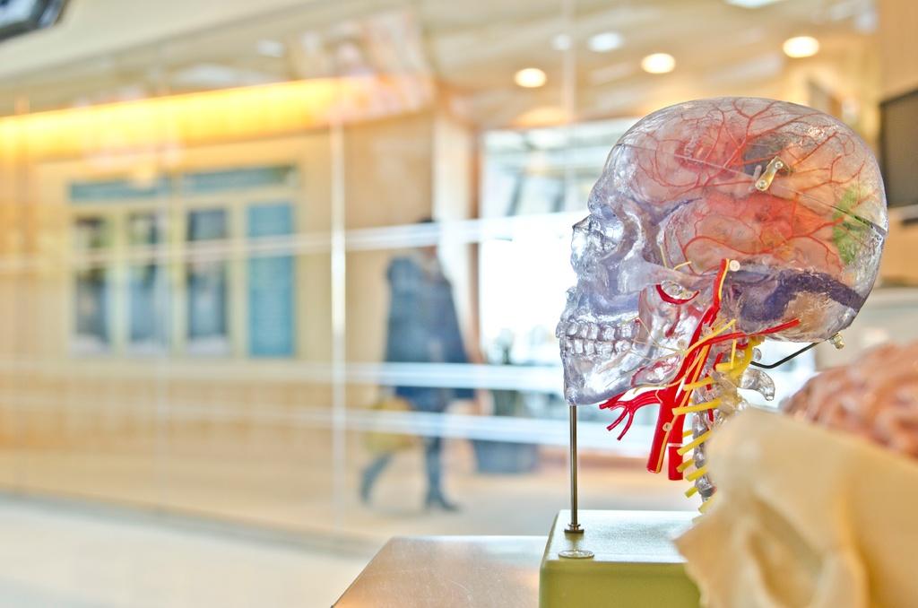Alzheimer y la enfermedad de las encías